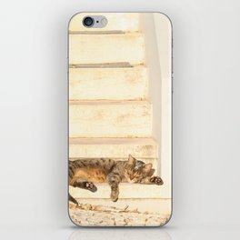 The sun shines on all cats equally iPhone Skin