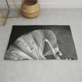 White Morning - graphite pencil drawing Rug