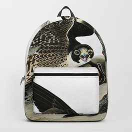 Peregrine Falcons Drawn - John James Audubon Backpack