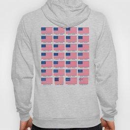 American Flag History Hoody