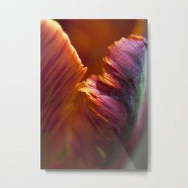 Parrot Tulip Petal Metal Print