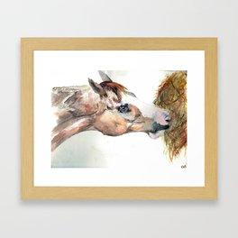 Barak Framed Art Print