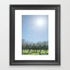 The Barren Framed Art Print