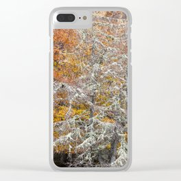 Orange and Silver Clear iPhone Case