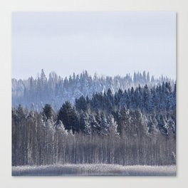 Blue shades in cold winter morning Canvas Print