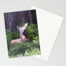 Philadelphia Zoo Series 15 Stationery Cards