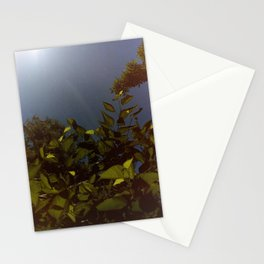 Leafy greens Stationery Cards
