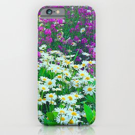 Wildflower White and Purple Daisies in A Meadow iPhone Case