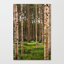 Forest for the Trees Canvas Print