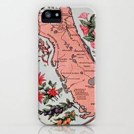 Vintage Map of Florida (1917) iPhone Case