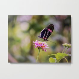 Thirsty Tropical Butterfly Metal Print