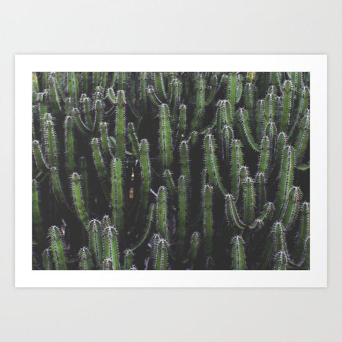 """Prickly Sisters"" Art Print"