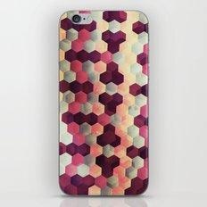 Glittery iPhone & iPod Skin