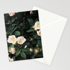 Snowwhite Stationery Cards