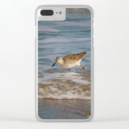 Common Sandpiper Clear iPhone Case