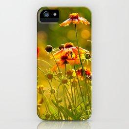 Greeting the Summer Rain iPhone Case