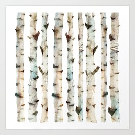 Birch Tree 2 Art Print