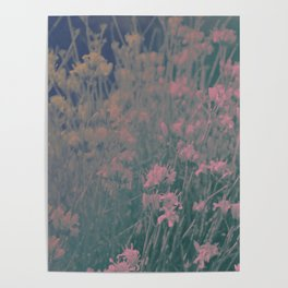 Capricious Floral II Poster