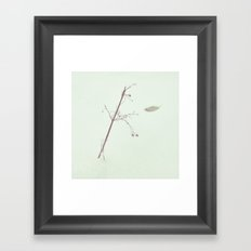 twig leaf snow Framed Art Print