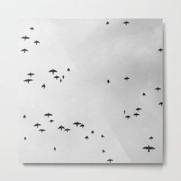 Le Nuvole Metal Print