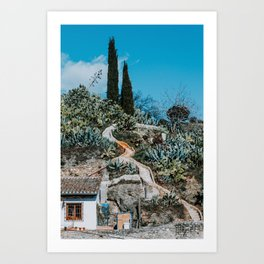 Scenery with a small house, many cactus plants, stairs and two trees in Granada, Spain Art Print