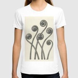 Vintage Fern Fiddleheads T-shirt