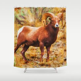 Big Horn Sheep Shower Curtain