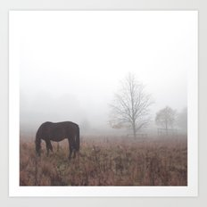 Horse in the Mist Art Print