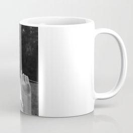 Not a Care Coffee Mug