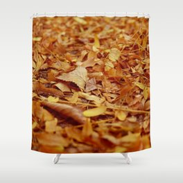 The Autumn leaves Shower Curtain