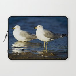 California Seagull Laptop Sleeve