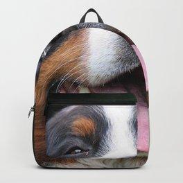 Bernese Backpack