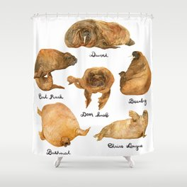 the furnished walrus Shower Curtain