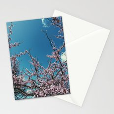 Spring Stationery Cards