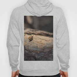 His perfect world Hoody