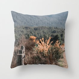 Rugged Fence Throw Pillow