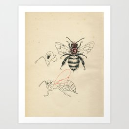Cabinet of Curiosities No.6 Art Print