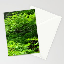 Japanese Maple Young Green Leaves and Raindrops Photography Stationery Cards