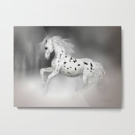HORSE - Appaloosa Metal Print