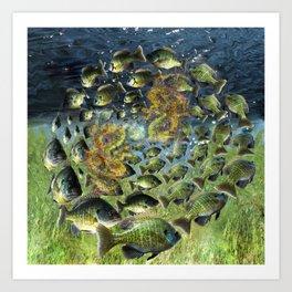 Bluegill Dragons Art Print