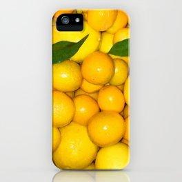 Bright Lemons & Kumquats iPhone Case