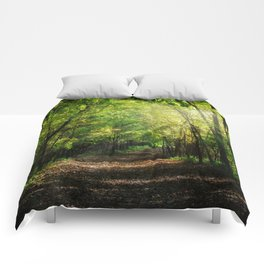 Fall Splendor Comforters