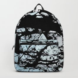 Recrystallized Backpack