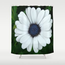 White African Daisy Tapestry Print Shower Curtain