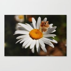 Daisy and Me Canvas Print