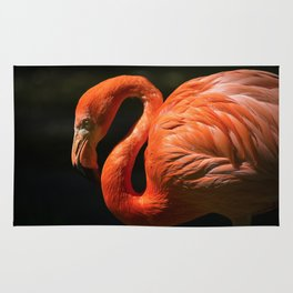 Flamingo photo Rug