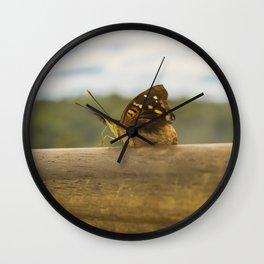 Butterfly against Blur Background at Iguazu Park Wall Clock