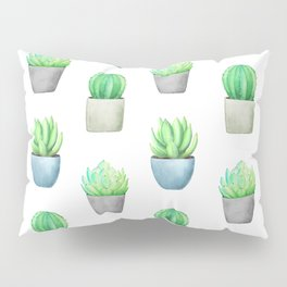 Succulent and Cactus Garden Pots Pattern Pillow Sham