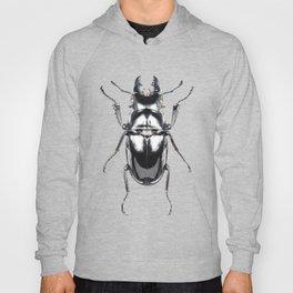 Beetles #2 (Odontolabis Siva) Hoody
