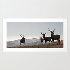 Red Stags Art Print